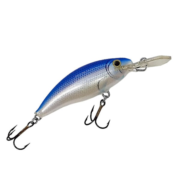 MINNOW BLUE SHINER M