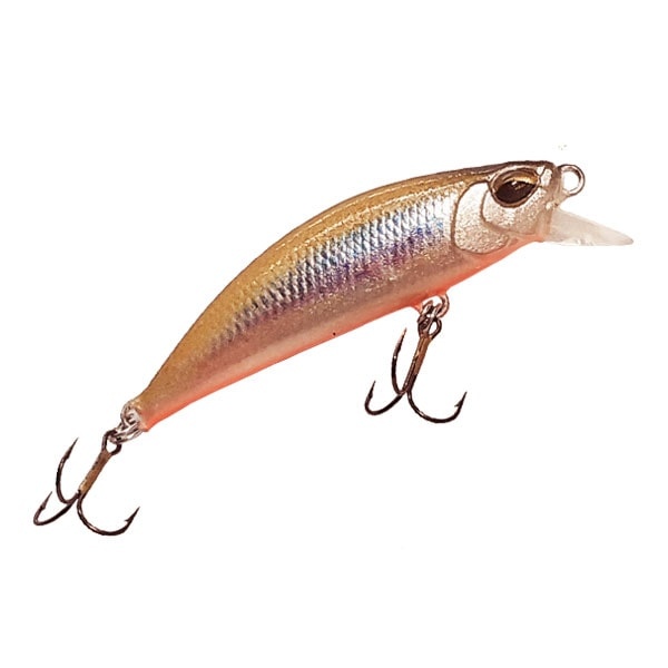 TWICH WAGASAKI BROWN RED BELLY
